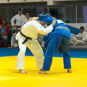 XXIII традиционный командный турнир по дзюдо